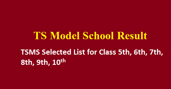 TS Model School Results 2019 TSMS Selected List for Class 6th/7th/8th/9th/10th